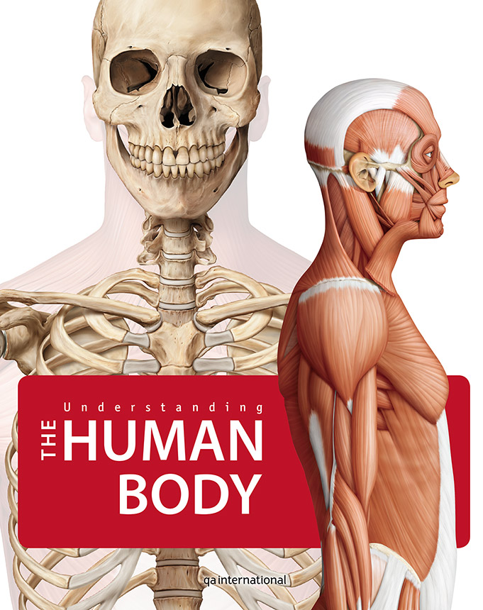 Health encyclopedias - Understanding the Human Body