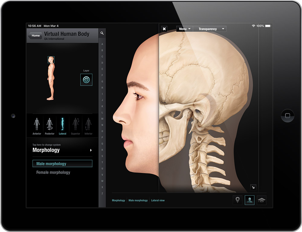 The Virtual Human Body